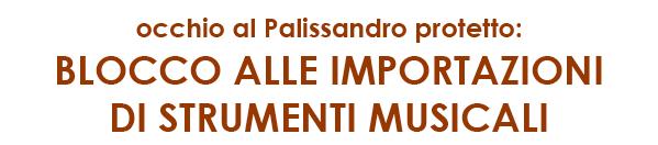 occhio al Palissandro protetto: blocco alle importazioni di strumenti musicali