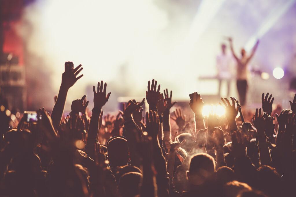 persone che si divertono durante un concerto